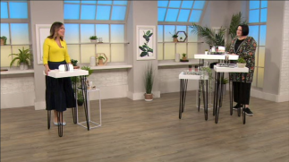 Nikki Taylor with Alex Kramer on QVC TV